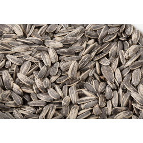 Sunflower Seed Salted